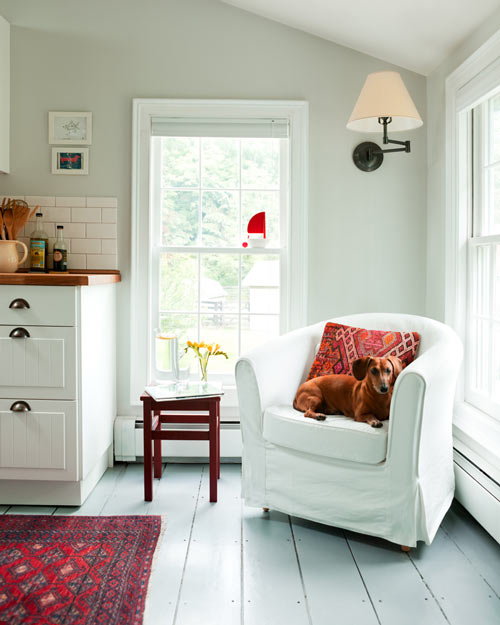 The upholstered chair in the kitchen is a comfortable place for Fred to sit. (Photo: Emily Gilbert)