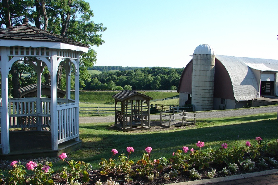 Gazebo and farm