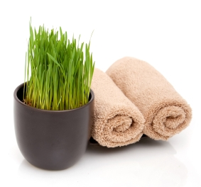 Spa towels and wheatgrass