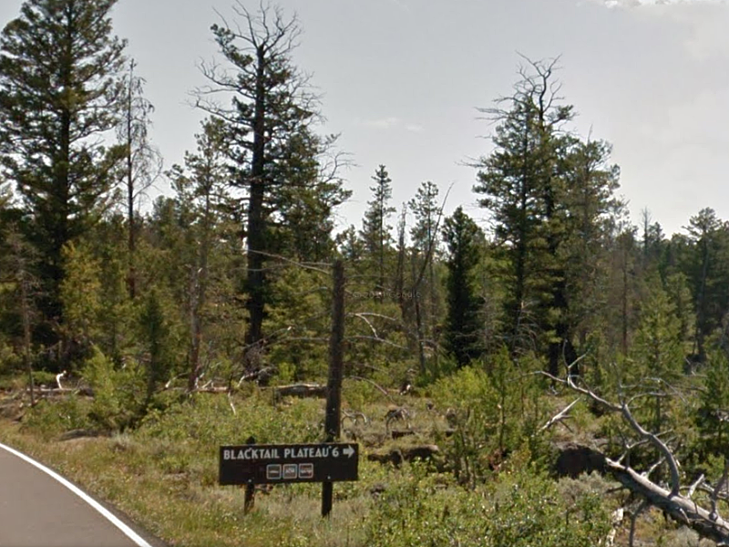 Sign for Blacktail Plateau Drive.
