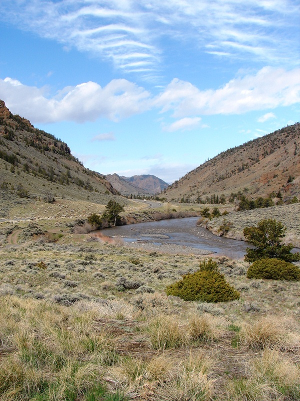 North Fork of the Shoshone River.