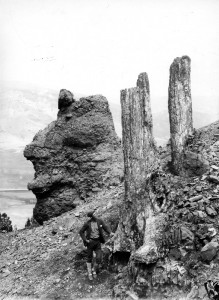 Petrified trees on Amethyst Mountain, 1890. (Photo: Wikipedia)