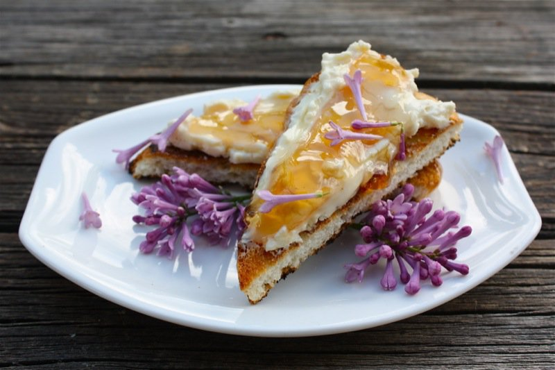 Old-Fashioned Lilac Jelly