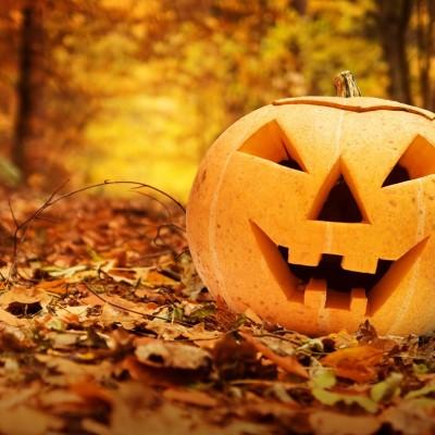 50 Ways to Decorate Pumpkins