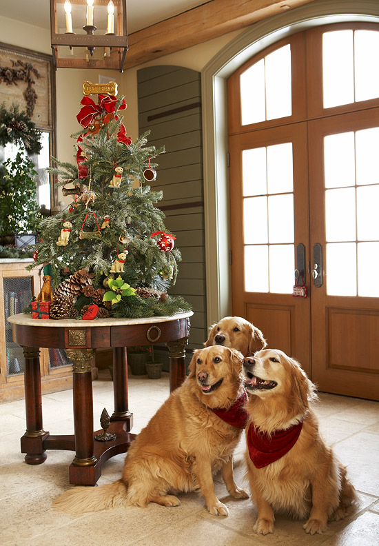 In the foyer, the dogs have their own tree. The bone as a tree topper is awesome touch. (Photo: Traditional Home)