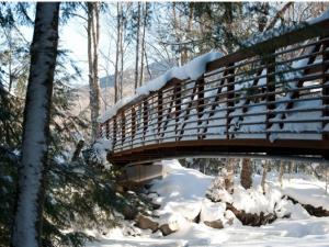 Winding path to the bridge