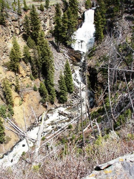 Undine Falls, near Mammoth Hot Springs.