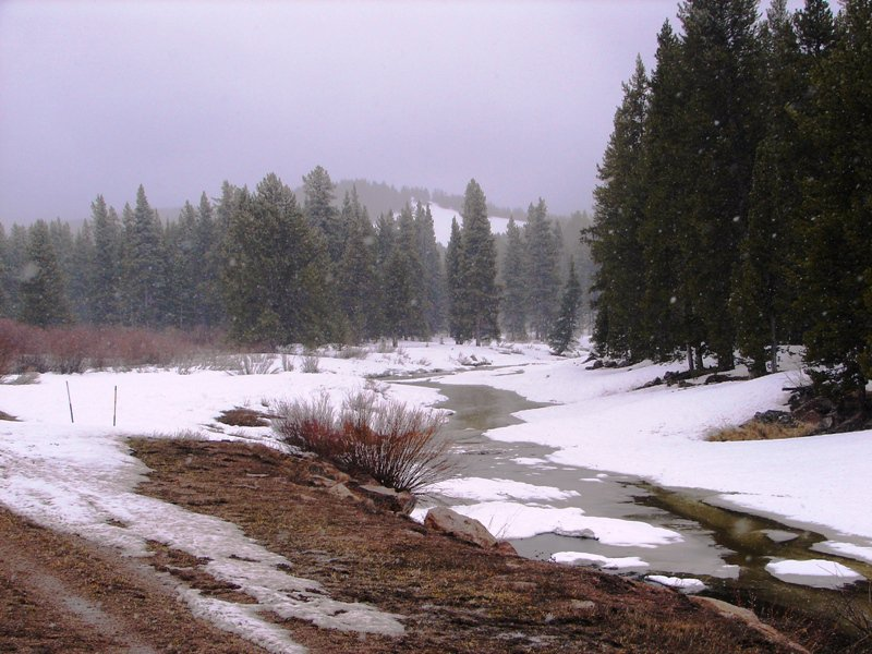 Snow in the Big Horn Mountains at 9,000 feet.