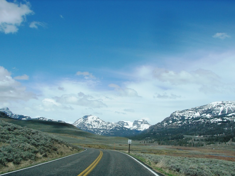 At Soda Butte Canyon, snow-capped mountains come into view.
