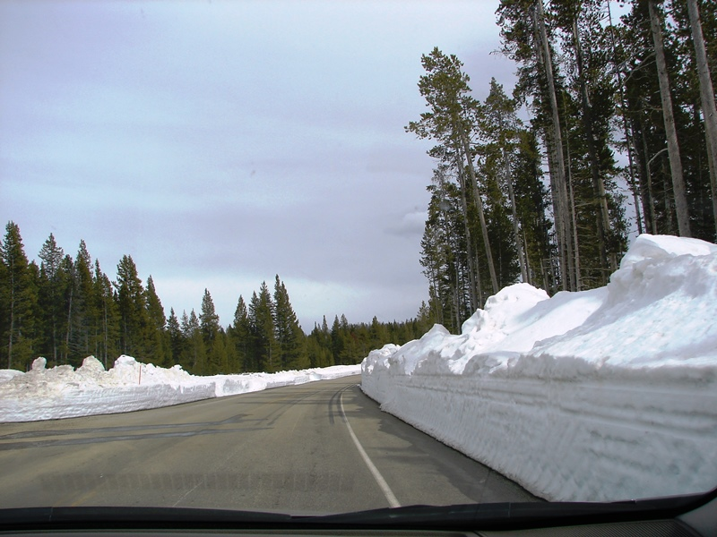 View of Beartooth Highway (US 212) from the front window of our car.