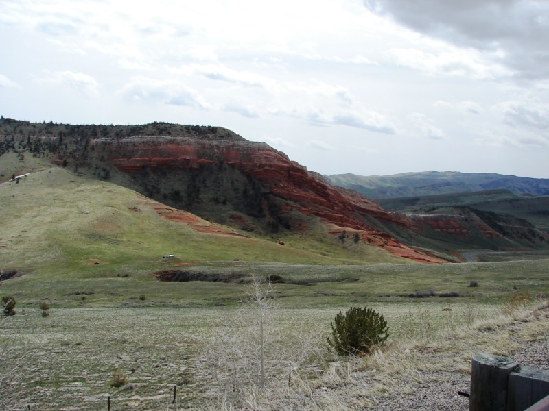 Rugged red rock is juxtaposed against a sea of green velvet.