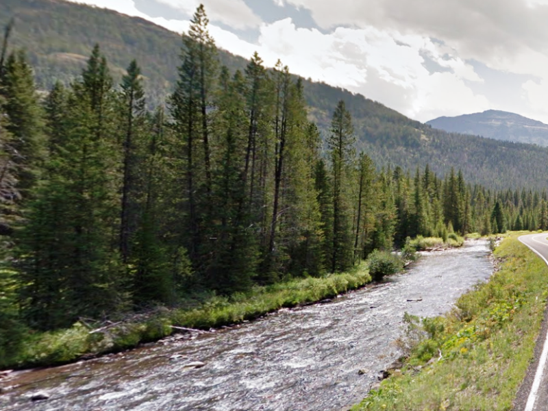 Soda Butte Creek is popular fishing spot for catching native Yellowstone cutthroat trout.